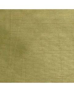 Bamboo Nova Solid